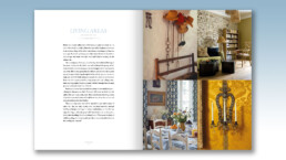 Provence Style - Living Areas, Chapter Introduction